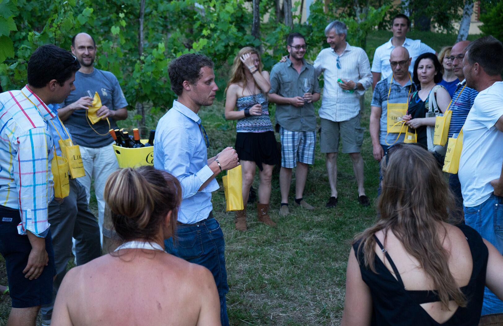 Likof 2015 Degustazione al tramonte nel vigneto, San Floriano del Collio Števerjan (FVG) Pokušnja vin v vinogradu
